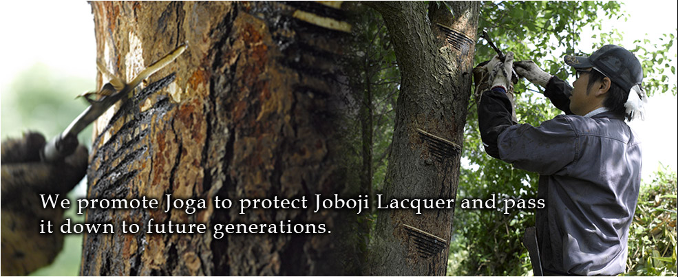 We promote Joga to protect Joboji Lacquer and pass it down to future generations.